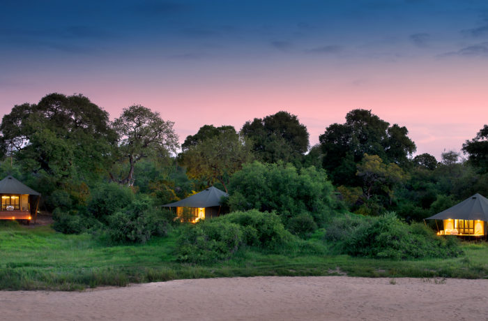 Phinda Tented Camp